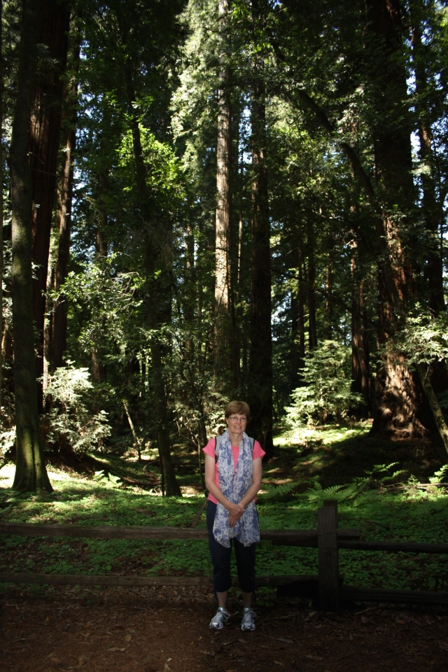 Mam in the Redwoods