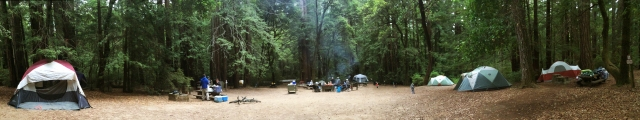 The Campsite, Portola Redwood State Park